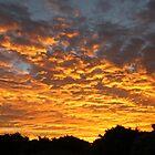 Golden Sunset by alternatpics