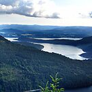 View From Saltspring Island by Jann Ashworth