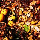 Lemons, Big Sur by Jessica Glade