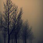 The Fog Parade by Leanna Lomanski
