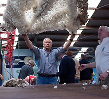 Throwing the fleece by Andrew Mather