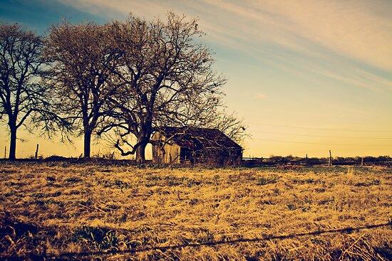 Country barn by Julia Goss