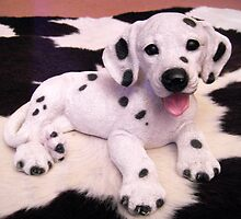 Dalmatian Puppy  by ©The Creative Minds