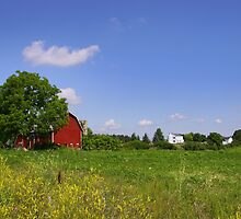 Barn And Farm by snehit