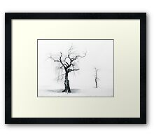 Old Tree, Young Tree Framed Print