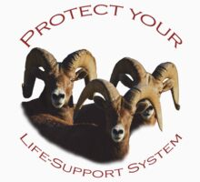 Protect Your Life-Support System Kids Clothes
