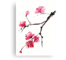 Flowering cherry. Canvas Print