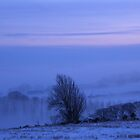 Mystical Country, Derry, Ireland by mikequigley