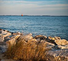 Sandy Point Shoal Lighthouse by LeeAnne Emrick