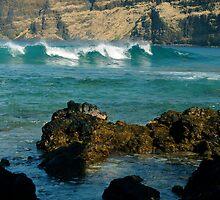 Curl of the wave by Jennifer Mendieta