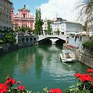 Ljubljana Summer by Mcrobbie