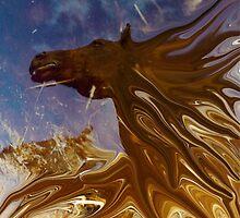 horse in the daily mirror by wolfschwerdt