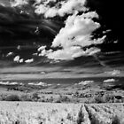 Blaceret, France [IR] by George Parapadakis (monocotylidono)