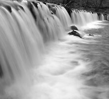 The Weir, Plymbridge Woods, Devon by Jonathan Carre