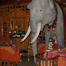 """An Elephant in the dining room ~ """"The Ruins"""" ~ Seattle by Marjorie Wallace"""