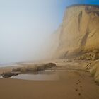 Coastal Cliffs and Fog by Zane Paxton