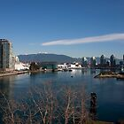 False Creek 2 by smartart