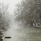 Winter Snow fall - Salado Creek, Salado, Texas by Patricia Miller