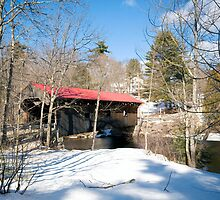 Waterloo Covered Bridge by Monica M. Scanlan