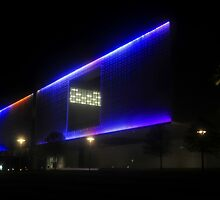Tampa Museum of Art by David Lee Thompson
