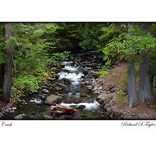 Card: Oregon Creek by USGolfers