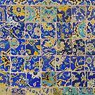 Masjed-e Shah - leftovers by Marjolein Katsma