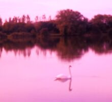 Swan Lake in pinks by anaisnais