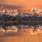 Eastern Sierra Sunrise by Nolan Nitschke