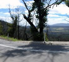 Kinglake-Heidelberg Road... by Luke Poyser