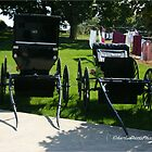 Amish Buggies in Ohio by DrCharlie