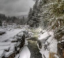 Fresh Snow at Rocky Gorge by sburdan