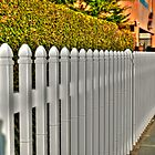 White Fence by kingstid
