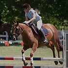 Chestnut flying round a course~ Rylestone-Kandos Show 2010 by MomentsinTime