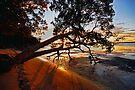 Mallabula another Magic Sunset by bazcelt