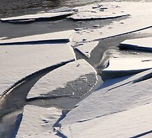 Ice Floes by Pardus