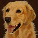 golden retriever by carss66
