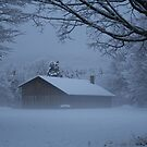Morning Mist in the snow by Linda Jackson