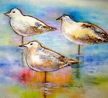 Seagulls by Marita McVeigh