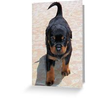 Me and My Rottweiler Shadow Greeting Card
