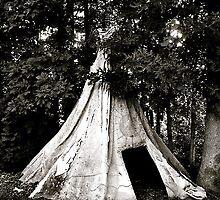teepee by Dacey Barnes