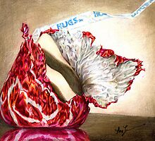 Hug Unfurled (Candy kiss and hug) by Alma Lee