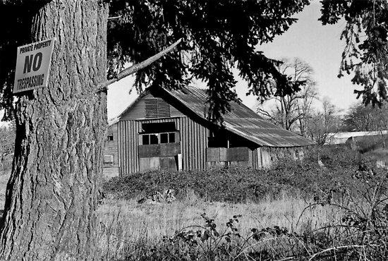 Derelict Barn - No Trespassing B/W by Shawnna Taylor