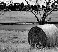 baling out in black and white by scarlettheartt
