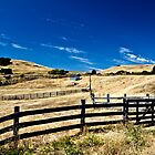 Straw Countryside by Andrew Simoni
