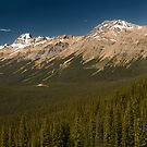 Panoramic view of Peyto lake, Canada by alopezc72