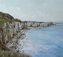 Northern Ireland Shoreline by Diko