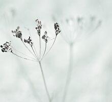 exhale by Purplecactus