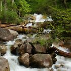 Shannon Creek Rapids by EchoNorth