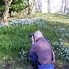 Hodsock Priory snowdrops by Ray Clarke