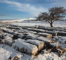 Winter In Ribblesdale by SteveMG